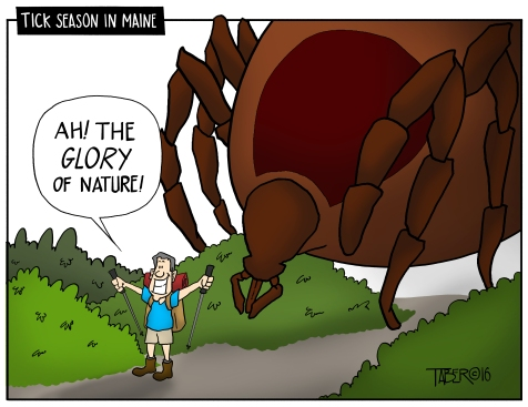 Tick Season in Maine - In every joke there is often an element of truth